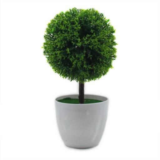 Planta maceta decorativa en punta